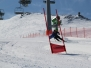 Skitag_2015